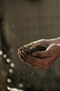 soil percolation test
